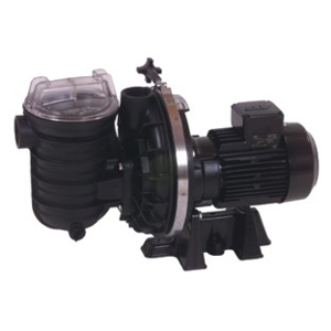 Starite-Duraglas II-Filterpumpe SW5P6RD-1 (03400SS) - für Meerwasser geeignet