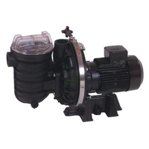 Starite-Duraglas I-Filterpumpe 5P2RF-1 (03124)
